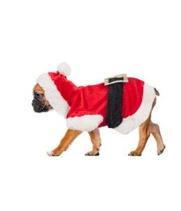 Hondentrui kerstman kostuum 25cm