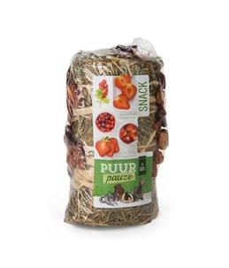 PUUR Pauze Hooirol Fruit