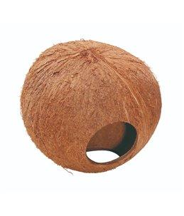 Coconut Huis