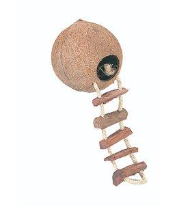 Coconut Huis met Ladder