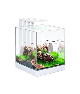 Aquarium nexus pure 25 led