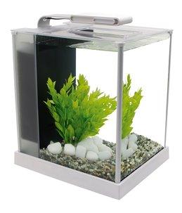 Fluval spec 3 nano aquarium 10l