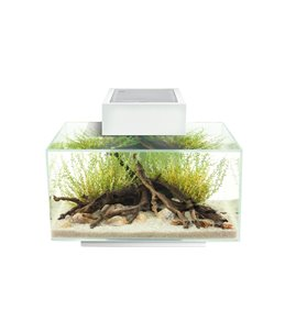 Fluval edge i 2.0 aquariumkit 23l