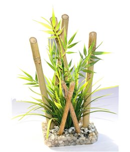 Sydeco bamboo large plants