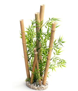 Sydeco bamboo xl plants