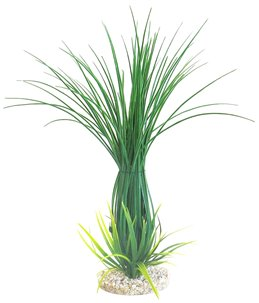 Sydeco tall grass clusters
