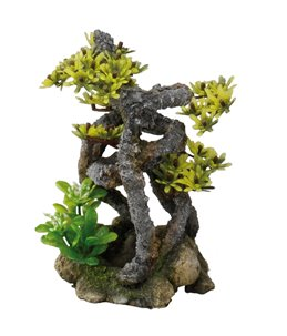 Twist bonsai