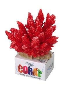 Coral module acropora