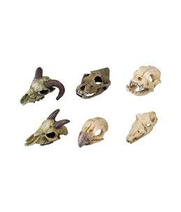 Skullmini assorted