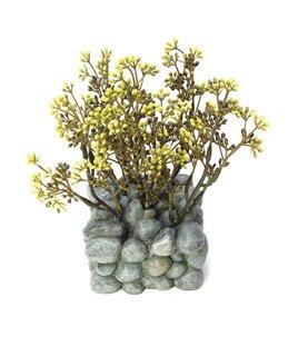 Fluval chi ornament plant op kiezels