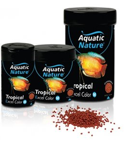 Tropical food excel color medium