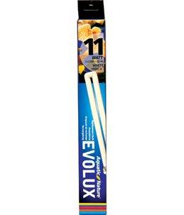 Evolux white 11 w (10 000 k›)