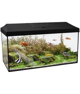 Aquariumset mindoro 60cm