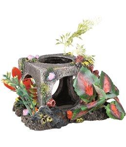 Decoratie kubus plantjes medium