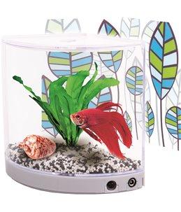 Betta-aquarium angulo - 1,3 l