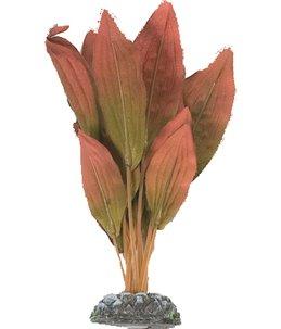 Aq. plant zijde egypt plant4 xs