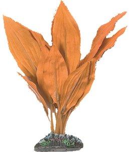 Aq. plant zijde egypt plant5 xs
