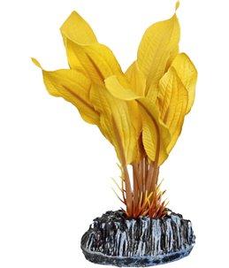 Aq. plant zijde tanzania plant6 s