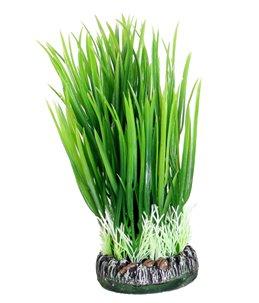 Aq plant plastic sri lanka plant1 s