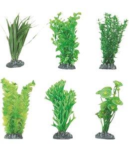 Aq. plant plastic fiji ass. - s