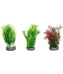 Aq. plant plastic sri lanka ass.- s