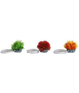 Aq. plant plastic uitstromer greece