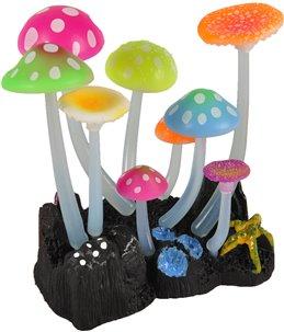 Decoratie fluo paddenstoelen