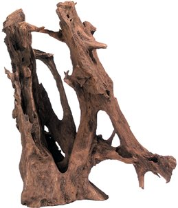 Mangrove wortel puur hout l 35-65cm
