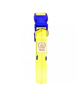 Flash Light Halsband USB Nylon