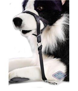 En Route Dog Control