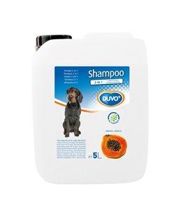 SHAMPOO 2 IN 1