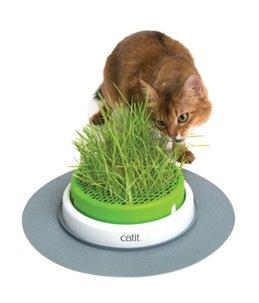 Ca senses 2.0 grass planter