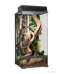 Ex rainforest terrarium small x-tall