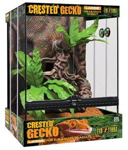 Ex crested gecko kit