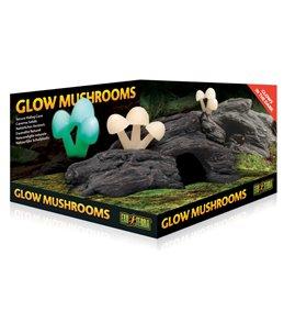Ex glow mushrooms natuurlijke schuilplaats