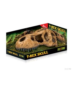Ex t-rex skull fossiele schuilplaats