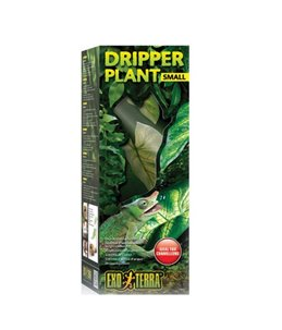 Ex dripper plant small