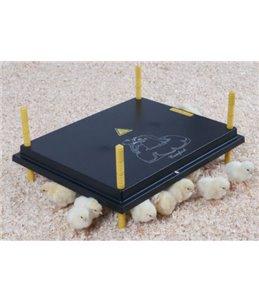 Warmteplaat 'Comfort' 40x60cm voor kuikens, 62W / 220-240V