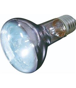 Daglichtspot daylight beam - 50w