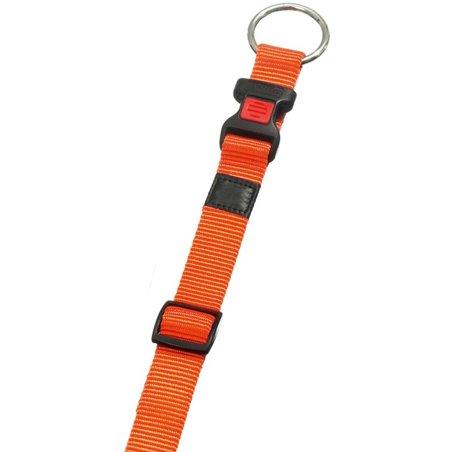 Halsband asp oranje 45-65cm 25mm
