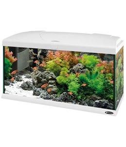 Capri 80 aquarium wit