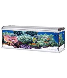 Star 200 zeewater