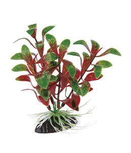 Blu 9058 plastic plant 10cm