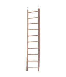 Hout. papeg.ladder escada 10 treden