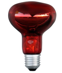 Infrarood lamp R80 Powerheat 100 Watt