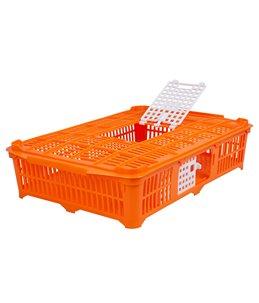 Transportkist voor duiven/kwartels oranj
