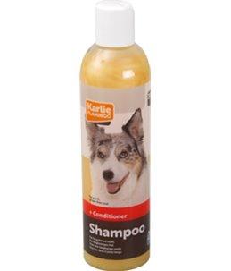 Shampoo+conditioner 2 in 1 300ml