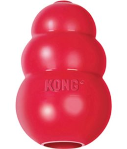 Kong toy small rood