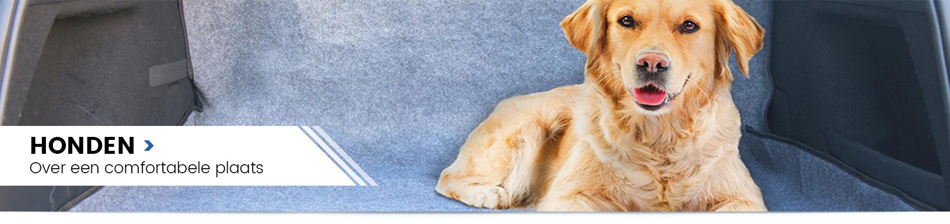 Worldofanimals - Honden